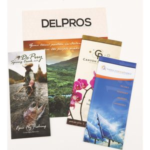 Catalogs & Brochures